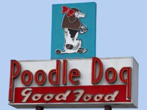 Poodle Dog Good Food