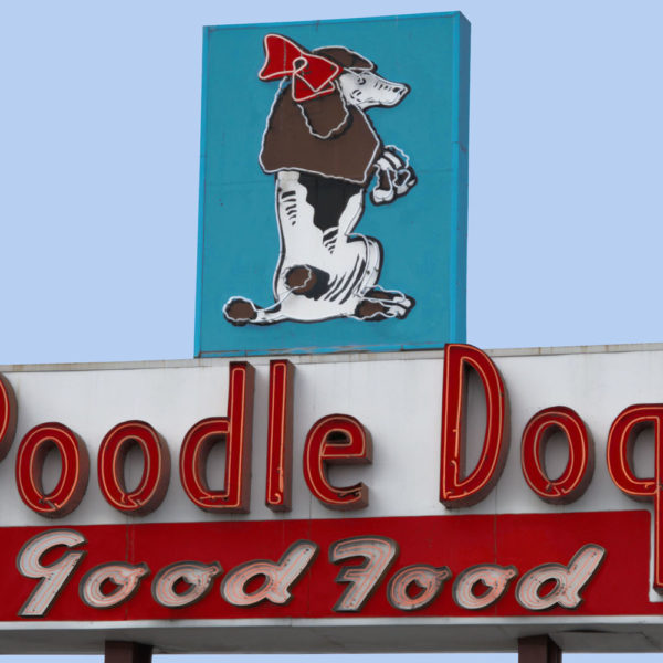 Poodle Dog Good Food